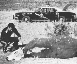 cattle_mutilation_police